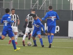 Primavera, Sampdoria-Juventus