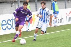 Diego Ripani, Juventus giovanili